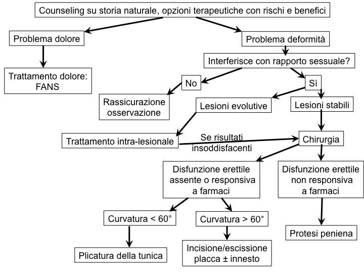 calcificazioni prostata ed infertility 2017