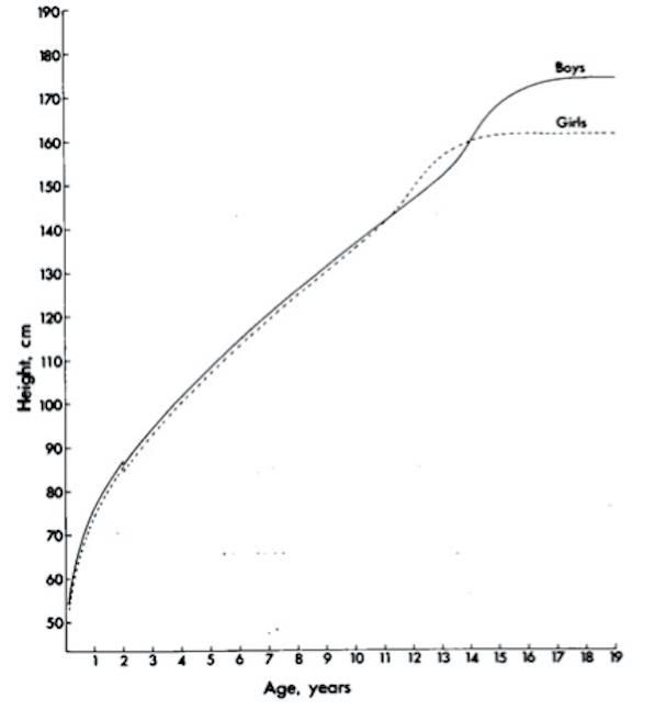 età di crescita del pene